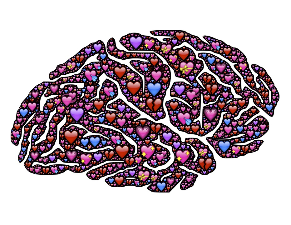 brain-619060_960_720